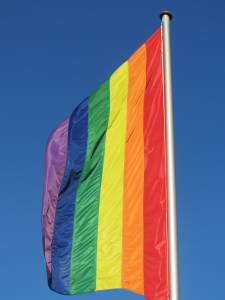 Rainbow flag Charlotte North Carolina DUI DWI Criminal Defense Attorney Lawyer.jpg