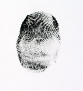Fingerprint-Charlotte-Criminal-Attorney-274x300