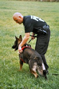canine-police-search-Charlotte-Monroe-Lake-Norman-200x300