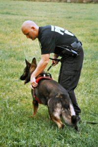 canine-police-search-Charlotte-Monroe-Lake-Norman-200x300